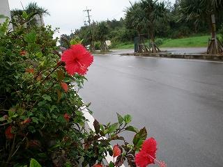 宿の前の道