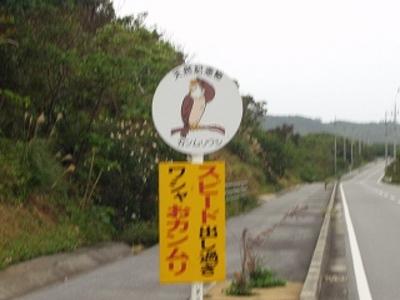 s-kanmuriP1010060