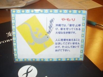s-yamoriP1010089